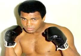 b81caba3bf8768ca8d6a2f9b02647811 Top 10 Famous Professional Man Boxers in 2014