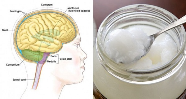 57e039f082f4007e7776b60338a0fe37 IMMEDIATELY IMPROVE BRAIN FUNCTION BY TAKING 2.7 TABLESPOONS OF COCONUT OIL. HERE'S HOW