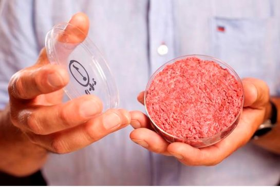 ab4ae42d59f83521975fee1587d97435 Petri dish to plate: Food innovators consider range of protein options