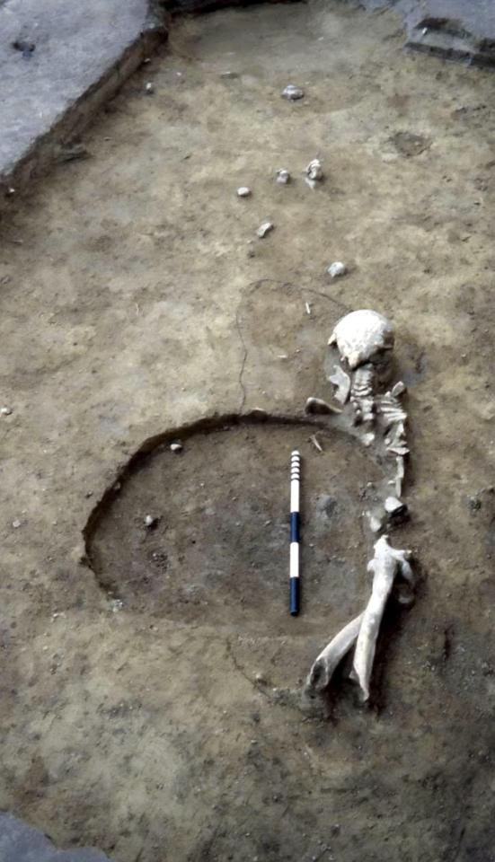 d81f28fc62baf32300a98a24197783e5 Early human farmers had SEX with primitive hunter gatherers – and had babies together, scientists find