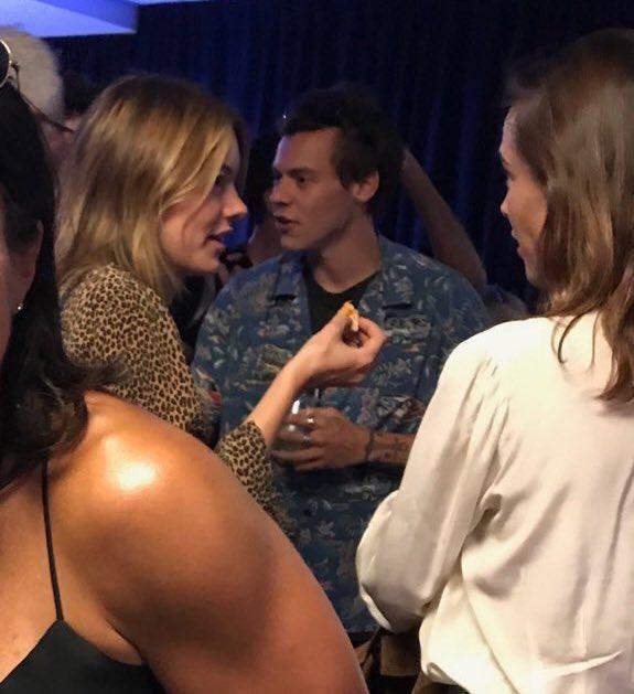 7534ed44b898c79a00c7372d6ea9fbd4 One Direction star Harry Styles is dating Victoria's Secret model, Camille Rowe… his third Angel romance