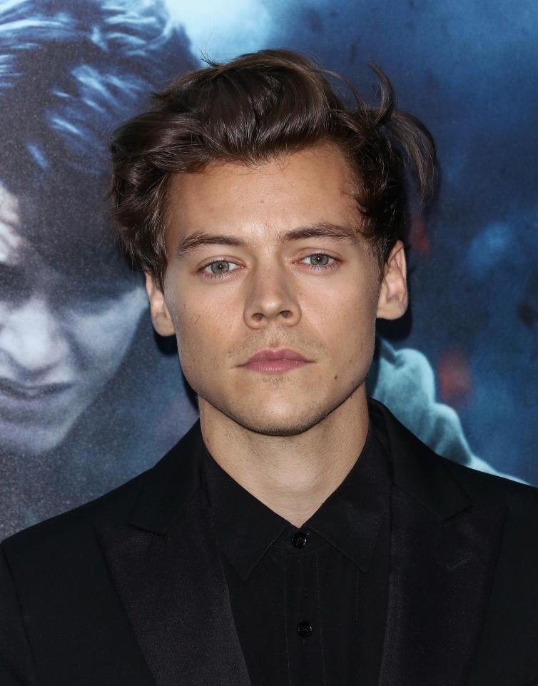 e26b877a0d68f4cdbd6a0937abe1267a One Direction star Harry Styles is dating Victoria's Secret model, Camille Rowe… his third Angel romance