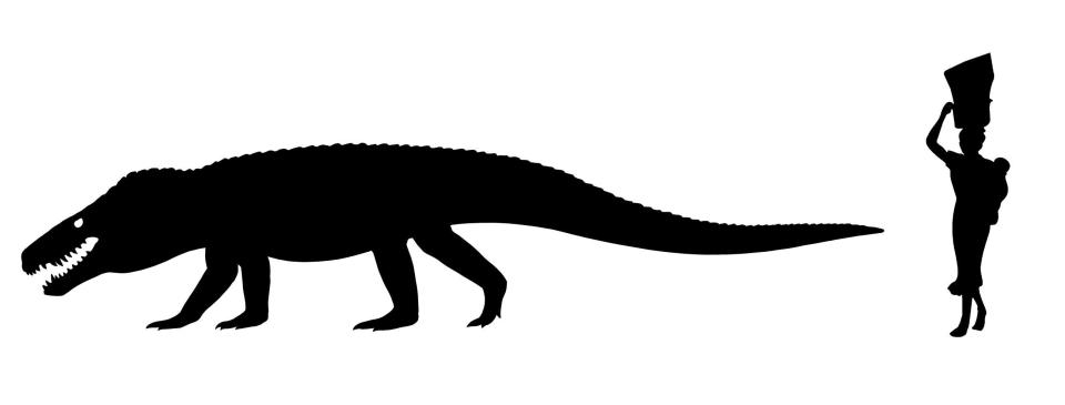 e29ac786f67f3c90efb80957081436f2 Terrifying ancient giant crocodile was 24 feet long with teeth as sharp as a T-Rex's