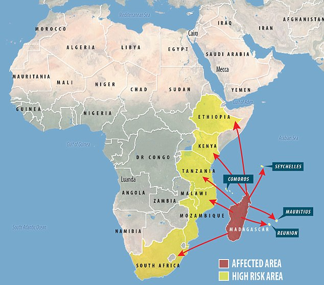 0f266b755ce00ad5a03ce34bc53abf79 Deadly plague epidemic in Madagascar that is at 'crisis' point will trigger an outbreak of POLIO because aid workers are now focused only on the 'medieval disease', researcher warns