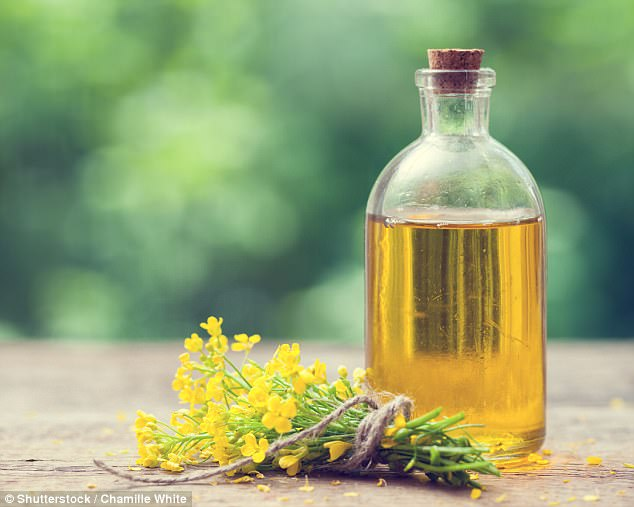 549d521ab8fa00d0435ef8d972c981a2 Scientists warn against using this ONE vegetable oil after study reveals it is detrimental to brain health, could worsen symptoms of dementia and causes weight gain