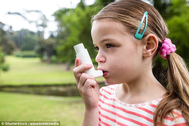ff27d5de5e52635d51ff14d8ea71f484 Young children who grow up exposed to air pollution are more likely to develop asthma due to their undeveloped lungs, study finds